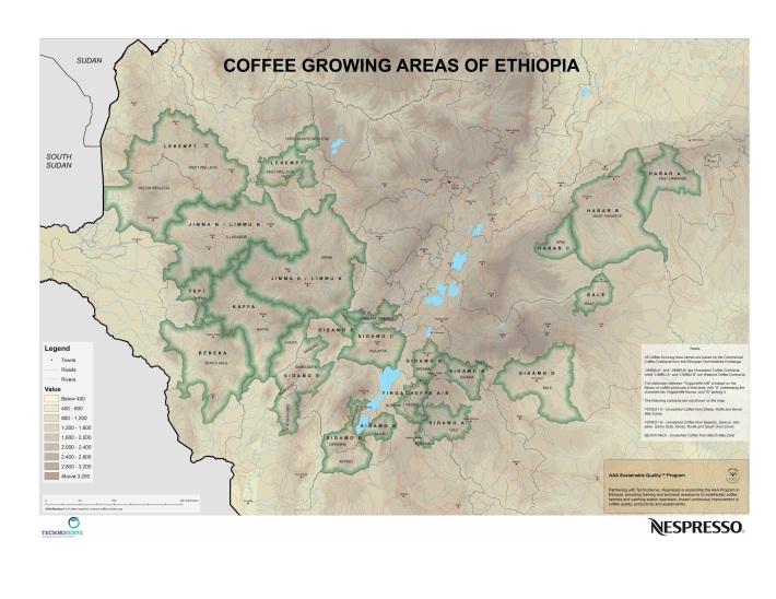 ethiopia-coffee-areas